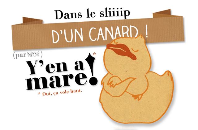 canard1